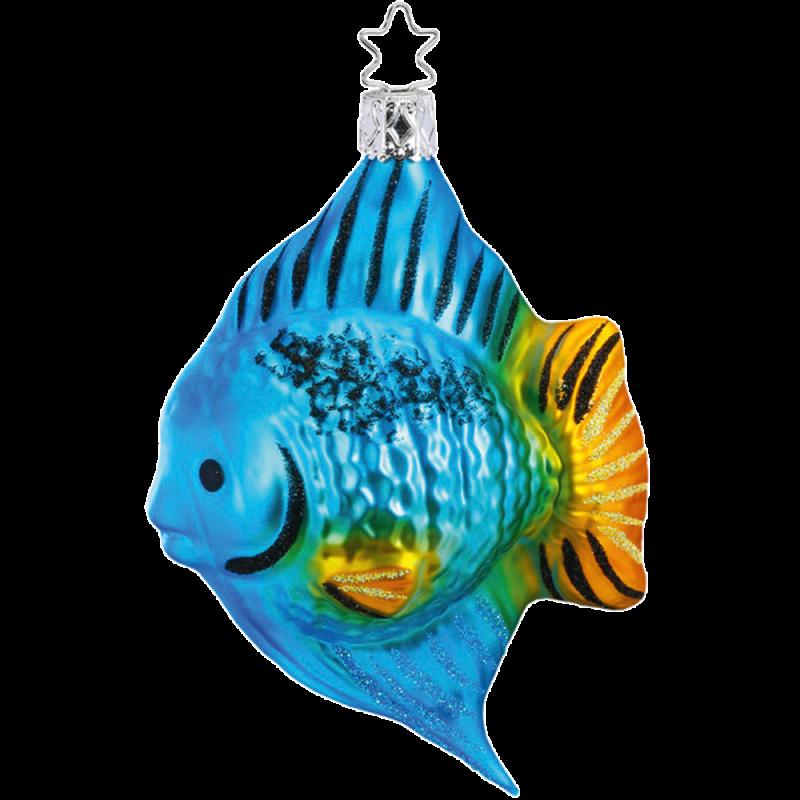 Korallenfisch 11cm Inge-Glas® und Weihnachtsschmuck
